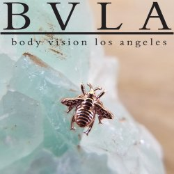 "BVLA 14kt & 18kt Gold ""Bumblebee"" Threadless End 18g 16g 14g Body Vision Los Angeles ""Press-fit"""