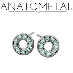 Anatometal Surgical Steel 9 Gem Halo Earrings (Pair)