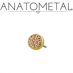 Anatometal 18kt Gold Bezel with Hammered Bronze Insert Threadless End 18g 16g 14g (25g Pin Universal) Threadless Posts Press-fit
