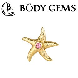 "Body Gems 14kt Gold Starfish Threadless End 25g Pin (will fit 18g, 16g, 14g Universal Threadless Posts) ""Press-fit"""