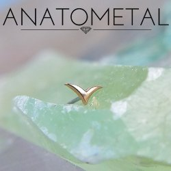 "Anatometal 18Kt Gold ""Wings"" Threadless End 25g Pin (will fit 18g, 16g, 14g Universal Threadless Posts) Press-fit"