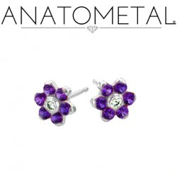 Anatometal Surgical Steel 4mm Flower Earrings (Pair)