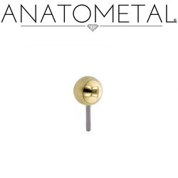 Anatometal 18Kt Gold Ball Threadless End 18g 16g 14g (25g Pin Universal) Threadless Posts Press-fit