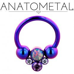 Anatometal Titanium Circular Barbell with Captive Gem Cluster 16g 14g 12g 10g