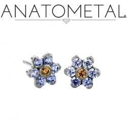 Anatometal Surgical Steel 5.5mm Flower Earrings (Pair)
