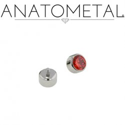 Anatometal Titanium Threaded 2.0mm Bezel-set Faceted Gem End 18 Gauge 16 Gauge 14 Gauge 12 Gauge 18g 16g 14g 12g