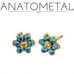 Anatometal 18Kt Gold 5.5mm Flower Earrings (Pair)