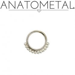 Anatometal Surgical Steel Vaughn Seam Ring With Silver Bead Overlay 18 Gauge 18g