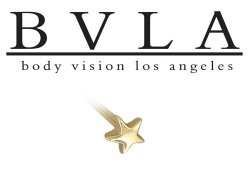 BVLA 14kt Gold 5mm Medium Puffy Star Nostril Screw Nose Bone Stud Nail Ring 20g 18g 16g Body Vision Los Angeles