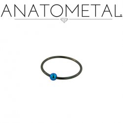 Anatometal Niobium Captive Bead Ring with Titanium Bead CBR 16 Gauge 16g