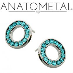 Anatometal Surgical Steel 14 Gem Halo Earrings (Pair)