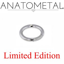 "Anatometal Surgical Steel 3/4"" Segment Ring 8 Gauge 8g Limited Edition"