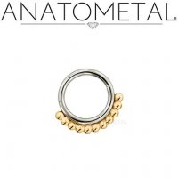 Anatometal Surgical Steel Vaughn Seam Ring With Gold Bead Overlay 20 Gauge 20g