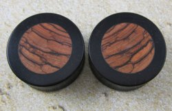 Ebony Inlayed Olive Wood Exotic Wood Plugs 1 1/8""