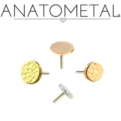 Anatometal 18kt Gold Threadless Disk End 25g Pin (will fit 18g, 16g, 14g, 12g Universal Threadless Posts) Press-fit