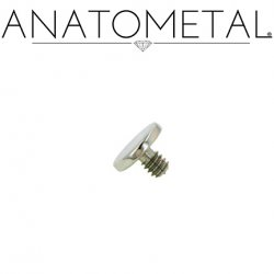 "Anatometal Surgical Steel Threaded Disk 3/16"" Flat Back End 10 Gauge 10g"