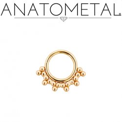Anatometal 18kt Gold Sabrina Daith Septum Seam Ring 18 Gauge 18g
