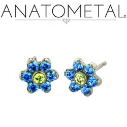 Anatometal Surgical Steel 7mm Flower Earrings (Pair)