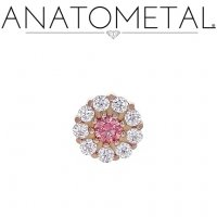 Anatometal 18kt Gold Miro Threaded End 18g 16g 14g 12g