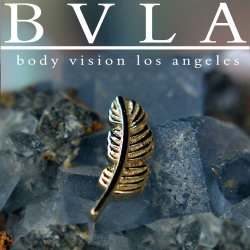 "BVLA 14kt Gold ""Feather"" Threadless End 18g 16g 14g ""Press-fit"""