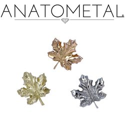 Anatometal 18kt Gold Maple Leaf Threaded End Dermal Top 18g 16g 14g 12g