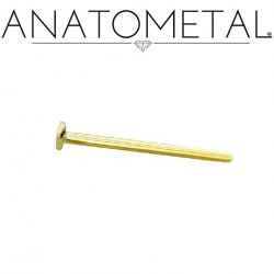Anatometal 18kt Gold Disc Disk Nostril Screw Nose Ring 18 Gauge 20 Gauge 18g 20g