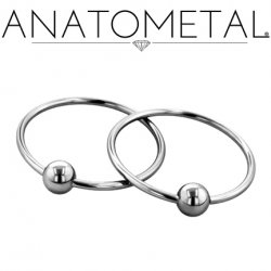 Anatometal Surgical Stainless Steel Large Diameter Fixed Bead Ring 10 Gauge 10g