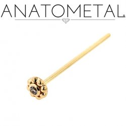 Anatometal 18kt Gold Ipsa Nostril Screw Nose Ring 1.5mm Gem 20 Gauge 18 Gauge 20g 18g