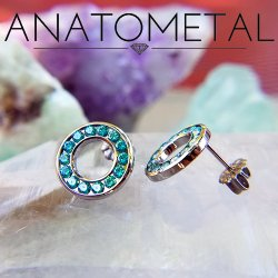 Anatometal Titanium 14 Gem Halo Earrings (Pair)