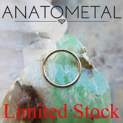 "Anatometal Surgical Steel 5/8"" Segment Ring 14 Gauge 14g Limited Stock"