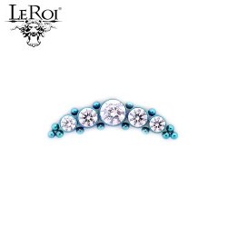 LeRoi Titanium 5 Gem Cluster with 14 Titanium Bead Accents Threaded End Dermal Top 18 Gauge 16 Gauge 14 Gauge 12 Gauge 18g 16g 14g 12g