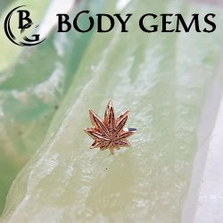 "Body Gems 14kt Gold ""Leaf"" Threadless End 25g Pin (will fit 18g, 16g, 14g Universal Threadless Posts) ""Press-fit"""