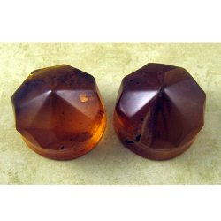 Burmese Amber Gem Cut Double Flare Organic Plugs 1""