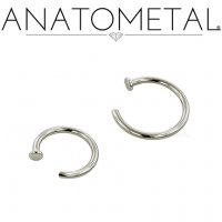 Anatometal Surgical Steel Nostril Nail Nose Ring 2mm Disk 20 Gauge 18 Gauge 20g 18g Anato Steel Nostril Nail 20g 18g 19 25 Diablo Body Jewelry The Art Of High Quality