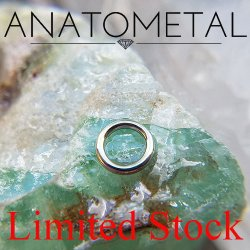 "Anatometal Surgical Steel 3/8"" Segment Ring 12 Gauge 12g Limited Stock"