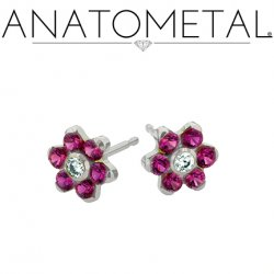 Anatometal Surgical Steel 4.5mm Flower Earrings (Pair)