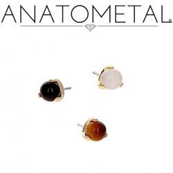 Anatometal 18Kt Gold Claw-set 3mm Gem Threadless End 18g 16g 14g (25g Pin Universal) Threadless Posts Press-fit